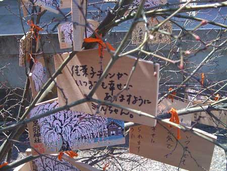 http://www.genkipolitan.com/img_kokoro/kanachan.jpg