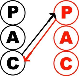 http://www.genkipolitan.com/img_kokoro/pac.jpg